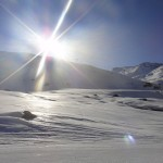 Arctic Sunshine