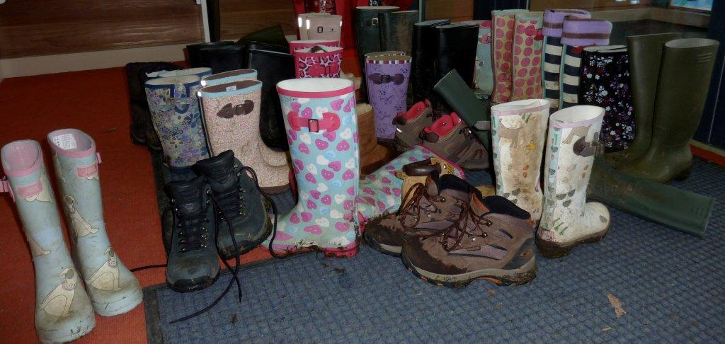 Gaggle of Wellies and Boots
